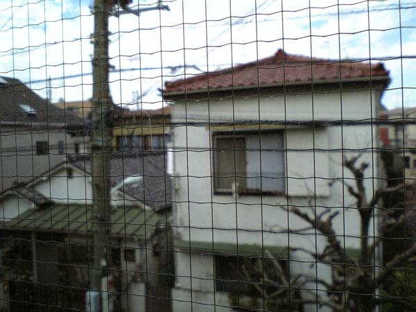 2006-03-19-001.jpg