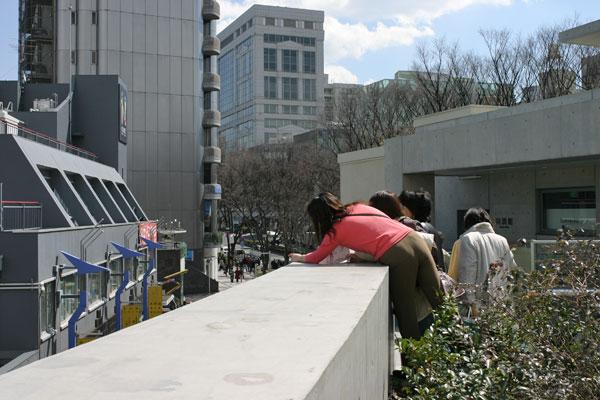 2006-03-14-031.jpg