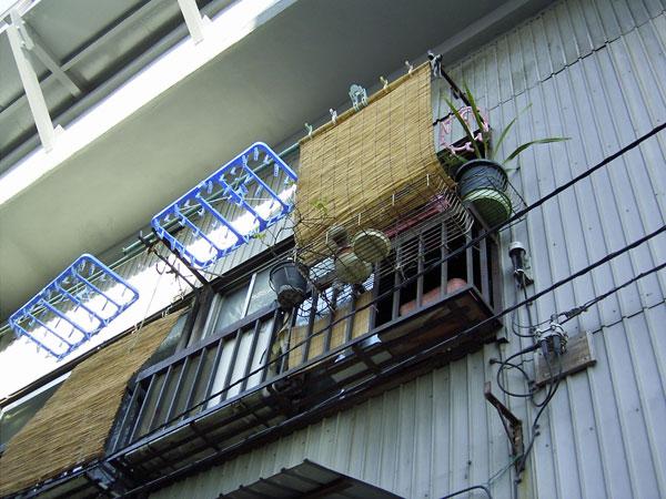 2006-11-25-012.jpg