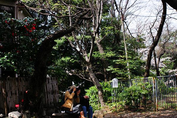 2006-04-01-034.jpg