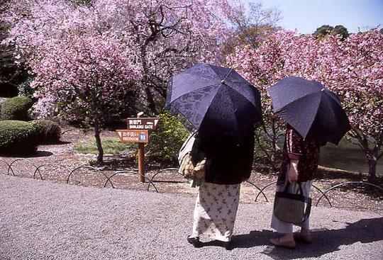 新宿御苑、2002-03-30-001.jpg