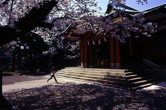2001-04-03-001.jpg