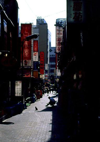 2002-02-23-001.jpg、湯島の猫
