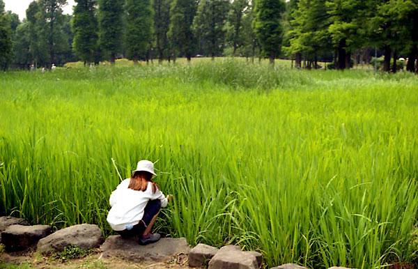 2002-05-30-010.jpg
