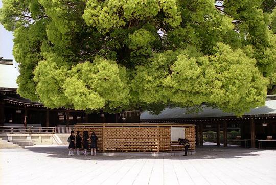 2002-04-24-005.jpg、明治神宮