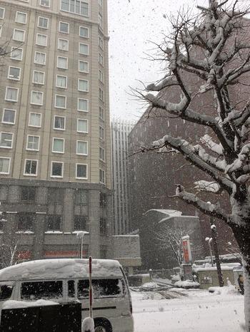 Sapporo161210-1