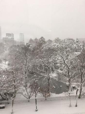 Sapporo161210-2