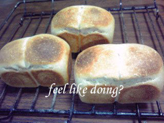 いちご酵母でミニ食パンのはずが