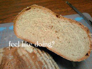 中は食パンのようだ…
