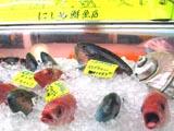 00牧志市場魚.jpg