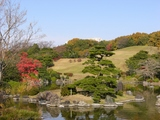 日本庭園�