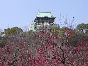 大阪城梅林、2