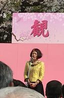 長崎観桜会