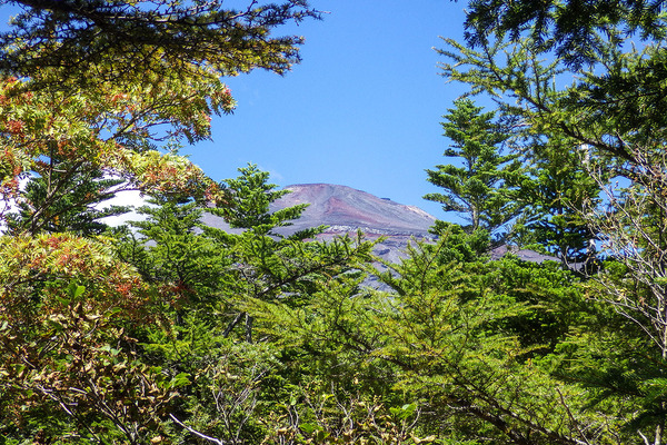 御殿庭下からの富士山