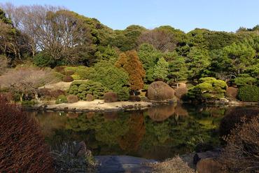 小石川植物園2015-2