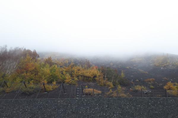 富士山の紅葉2016-1