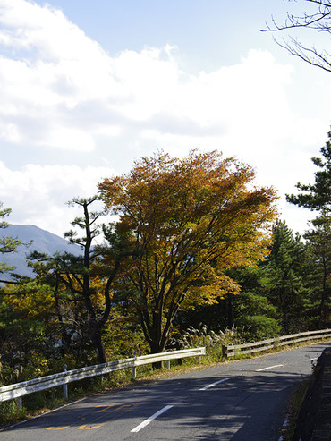 ashigara2011_1
