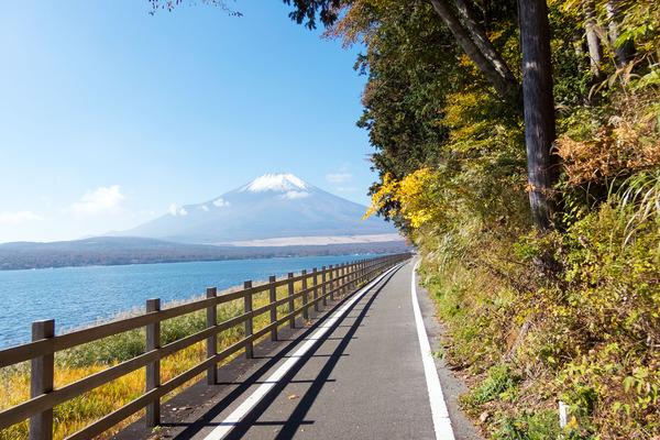 山中湖の秋2016-3