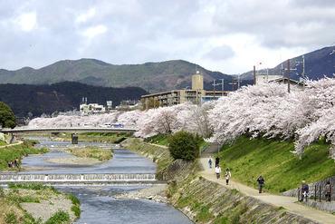 京都201404-1