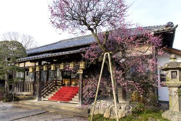 観音寺2015-2