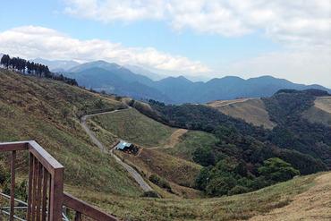 大野山牧場2012