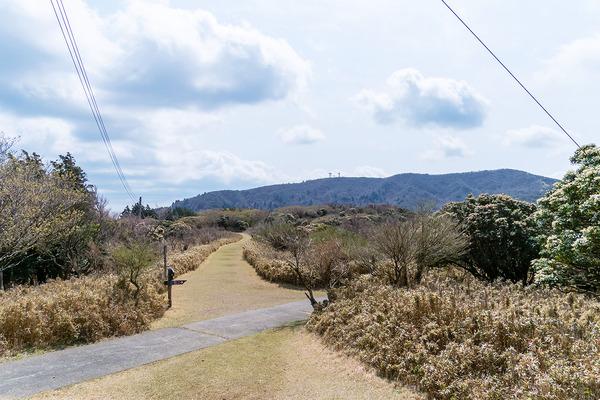 金柑山202004-2