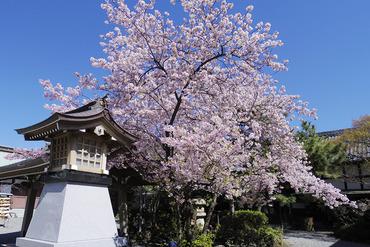 浅間神社201403-1