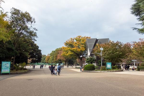 上野公園2020_1