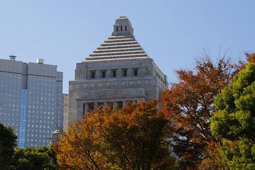 国会議事堂2013-1