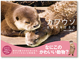 160px_kawauso_book