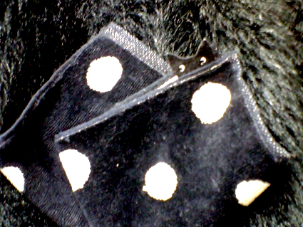 黒猫ハンカチ