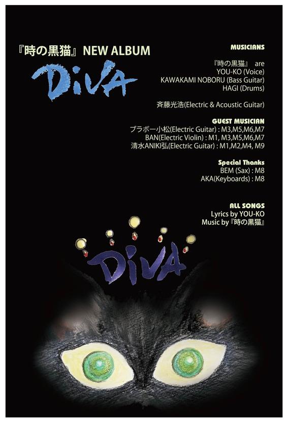 DIVA_DM-01