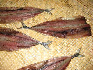 秋刀魚の干物3