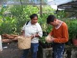 椰子の実を食べる