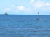 パラオ海1