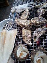 イカも牡蠣も