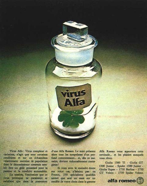 alfavirus