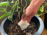 使い終わったら植物の肥料に2