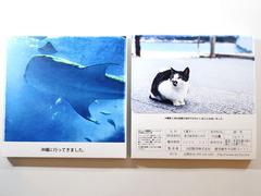 「GIFT TEA BOX」ご利用例01