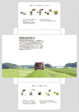 GIFT TEA BOX(パッケージ中面)