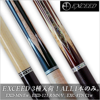 exceed201408