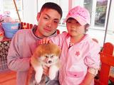 親子と秋田犬の赤ちゃん