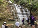 ターザン・フォールズ Tarzan Falls