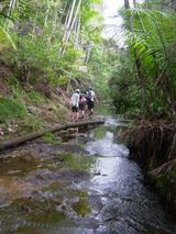 フォンテリバー2:川を歩く