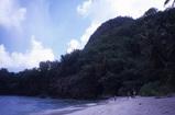 ハプトビーチ4