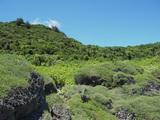 パガット岬とチャモロビレッジ9