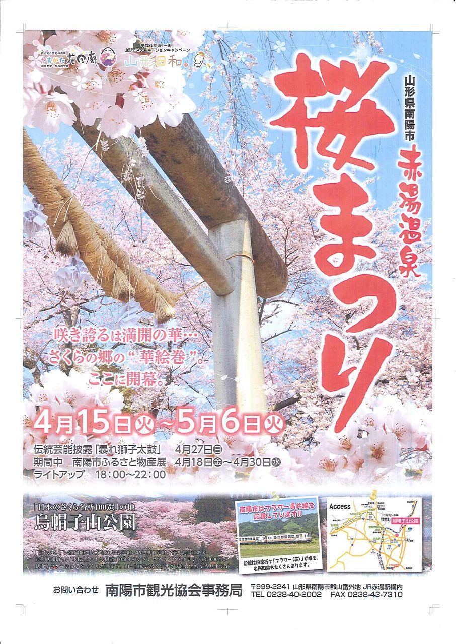 ブログ用桜まつり