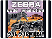zebra-code-prediction
