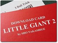 little-giant2