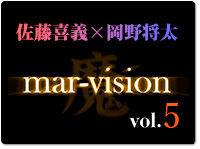 mar-vision5